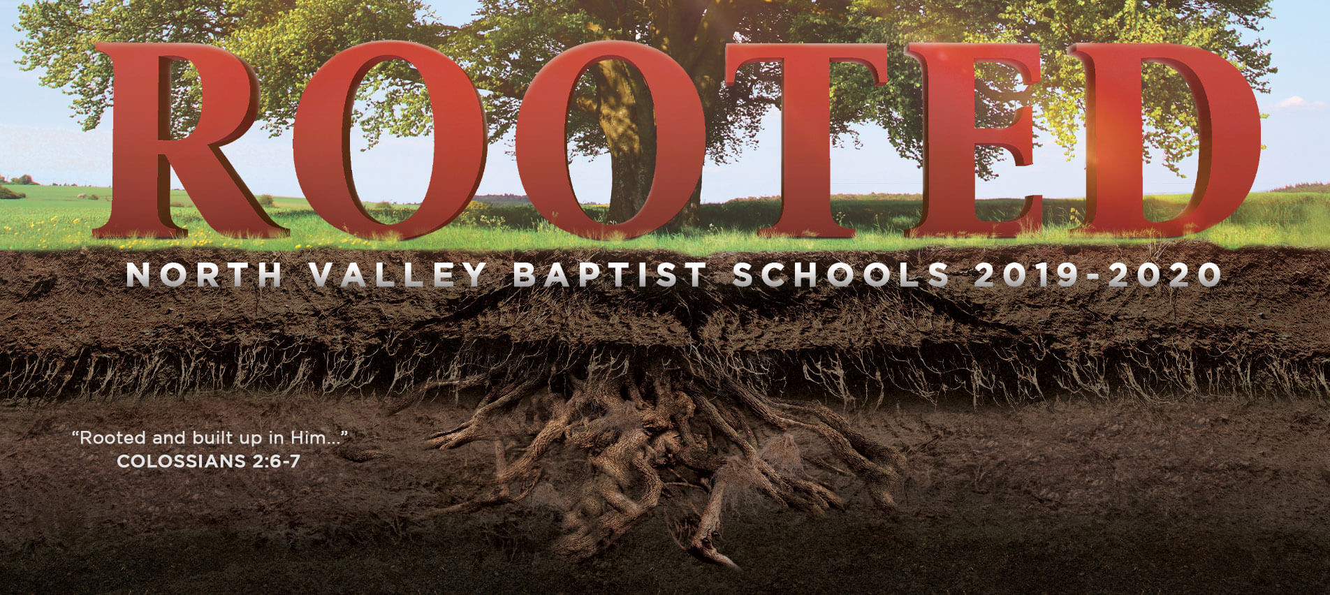 Rooted-web-banner